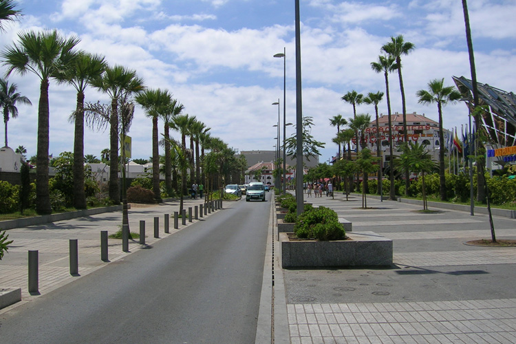 Rearrangement of Rafael Puig Avenue